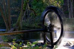 """""""Wasserkraft"""" von Hans Werner Lehner"""