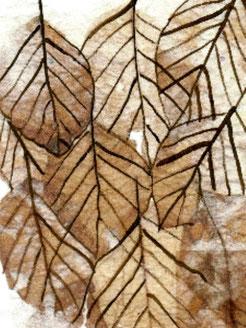 Lignes des feuilles