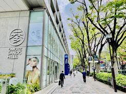 東京のレザークラフト(革)教室ヨコハマセリエ 表参道ヒルズからすぐのアトリエ