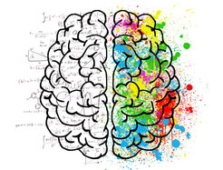 Gehirn, eine Seite sw, eine Seite bunt