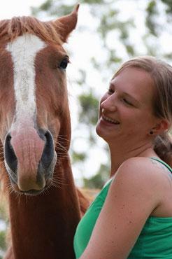 Australische Wildpferde zähmen, Problempferd, Horsemanship, Umgang mit dem Pferd