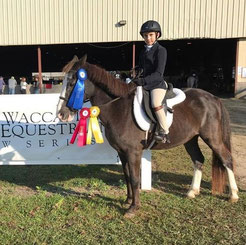 The Pony Gang Show team attends local and state wide Horse shows during the season