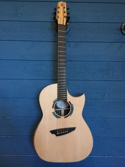 Fanned Fret Guitar