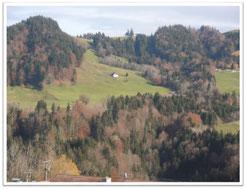 Ferienappartement Kessl, Hochparterre, Parterre, Allgäu, Oberstaufen Steibis, Oberstaufen Plus, Oberstaufen-Plus, Ausblick vom Balkon, Hochgrat, Hündle, Imberg, Staufen