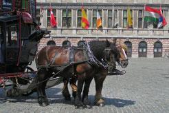 Antwerpen, 27.-30.06.2005