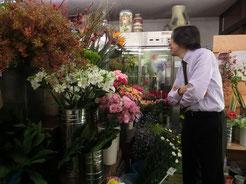 ヨシ兄、花を物色中~