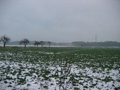 Am Standort der geplanten Fledermausbrücke östlich Colbitz im Winter 2009 ...