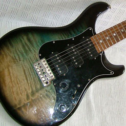 PRS BOLT-ON EG2 (USA)