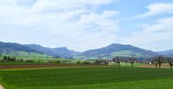 Auf dem Plateau von Wenslingen