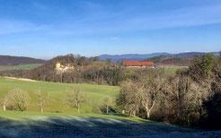 Blick vom Arxhof zum Schloss Wildenstein