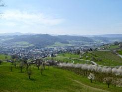 Blick über Sissach beim Abstieg zum Kienberghof