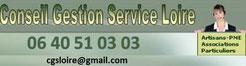 Conseil Gestion Service Loire