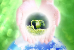 思いやりを育てる【自己変容の道】