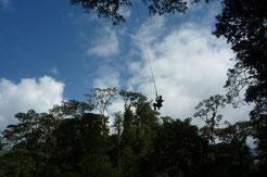 Combo: Canopy Tour o Tirolina y Puentes Colgantes