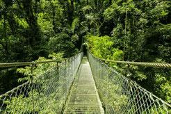 Combo: Canopy y Puentes Colgantes en Arenal