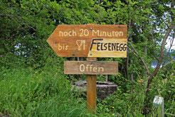 31. Mai 2016 Albis Passhöhe - Felsenegg- Üetliberg