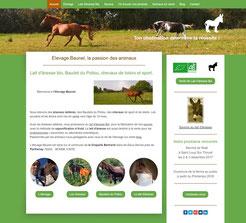 site elevage baunel cree en formation avec e-cime.fr spécialiste du site avec optimisation Référencement pour TPE