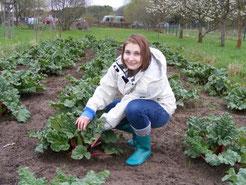 Louisa Säger (absolviert ein freiwilliges ökologisches Jahr) zeigt den gut gewachsenen Rhababer