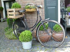 Der Einfachheit trotzen... - ein altes Fahrrad mit viel Charme - Offene Gartenpforte Sternschnuppe home & garden