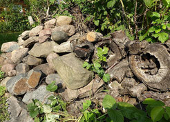 Stein- und Totholzhaufen als Unterschlupf. Fotos: Karsten Peterlein