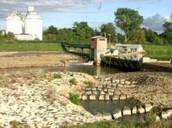 Leipzig Fluss warum in leipzig fische elendig verrecken müssen nabu leipzig