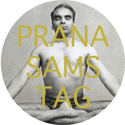 Pranasamstag