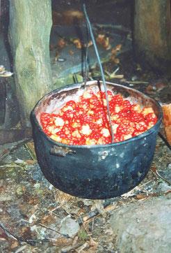 Survival Topf Bushcraft Nahrung