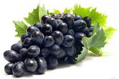 виноградівські пацьорки
