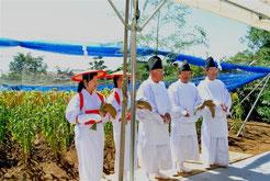 稲増家二世代での粟の抜穂