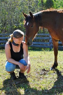 Australische Wildpferde zähmen - ein neuer Weg mit Pferden