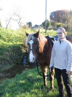 Weg zu Natural Horsemanship, Kommunikation und Vertrauen zum Pferd