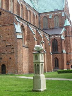Der Schwan vor dem Doberaner Münster