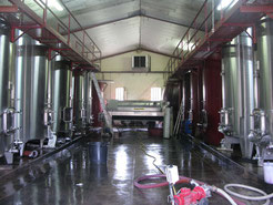 Chai de vinification
