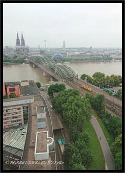 Köln Blick über die Eisenbahnbrücke zum Dom
