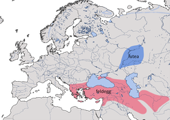 Karte zur Verbreitung der Schafstelze Typ Xanthophrys (Motacilla flava xanthophrys)