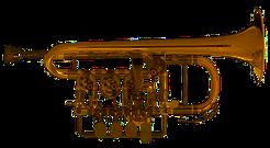 Scherzer Piccolo Trompete 8111-L