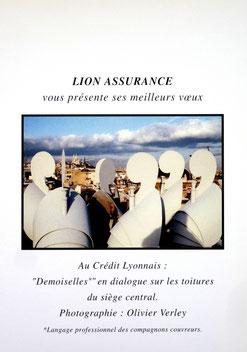 Les demoiselles, Vœux Lion- assurances