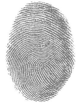 Fingerabdruck Identität