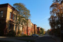 Rankpflanzen im bunten Herbstlaub an Häusern Prenzlauer Allee. Foto: Helga Karl