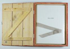 Bibliophilie Jérôme Mesnager Balades Dumerchez Bernard Editions Editeur