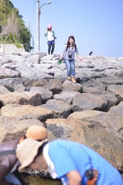 岩も白っぽく