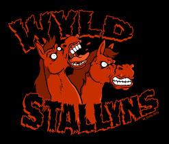Imajinn Shirtdesign Wyld Stallyns