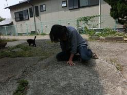 去り行くネコの姿に、バツグンの哀愁を感じるぜ。