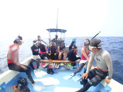 御蔵島のドルフィンスイム船でドルフィンスイマーがイルカを探し中