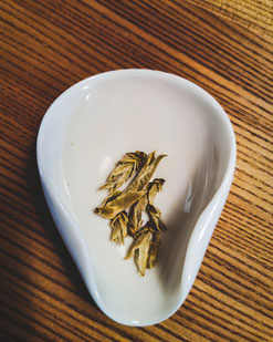 Aufnahme von Weißen Tee in der Tushita Galerie in Muenchen von Floratcha.