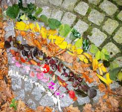 Regenbogen aus Naturmaterial