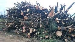 Hackholz Brennholz