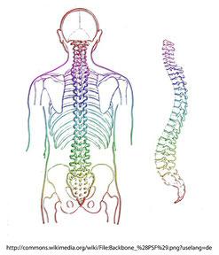 骨の位置を鍼灸で調整