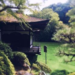 Photo by Azumi Uchitani