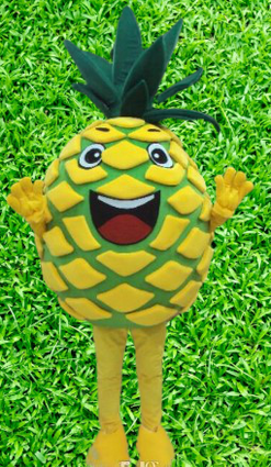 location animation mascotte fruit ananas